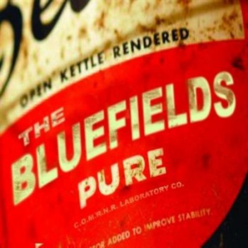 The Bluefields - Pure (2012)