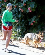 ADDS Nikki Reed | Walking the Dogs in LA | January 22 | 5 pics + 13