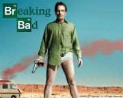 Во все тяжкие / Breaking Bad (Сериал 2008 - 2013) 18041f303833598