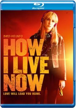How I Live Now 2013 m720p BluRay x264-BiRD