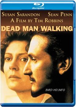 Dead Man Walking 1995 m720p BluRay x264-BiRD