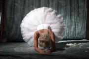 http://thumbnails110.imagebam.com/31410/17d5b1314093824.jpg
