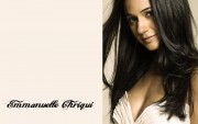Emmanuelle Chriqui : Sexy Wallpapers x 4