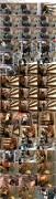 xxx-av 20868 パンキシャ!レンタルビデオ店の監視カメラは見た  07190
