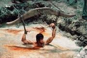 Рэмбо: Первая кровь 2 / Rambo: First Blood Part II (Сильвестр Сталлоне, 1985)  D1c0a1326648227