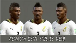 Download PES 2013 Asamoah Gyan WC Face by NS08