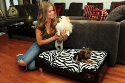 Carmen Electra Barefoot In Ripped Jeans Home Shoot March '11 HQ x 5