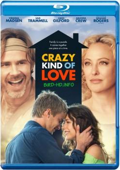 Crazy Kind of Love 2013 m720p BluRay x264-BiRD