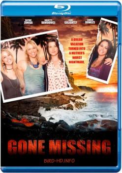 Gone Missing 2013 m720p BluRay x264-BiRD