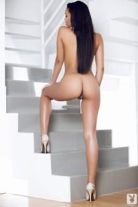 http://thumbnails110.imagebam.com/34189/204fff341880262.jpg
