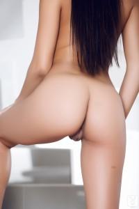 http://thumbnails110.imagebam.com/34189/246c9b341880270.jpg