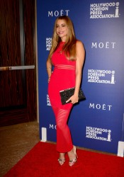 Sofia Vergara - Hollywood Foreign Press Association's Grants Banquet 8/14/14