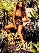 Cheryl Tweedy / Cole / Versini-Fernandez - Official 2014 Calendar -  x14 Large Scans