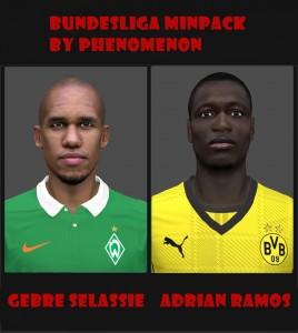 Download PES 2014 Bundesliga Mini Facepack by Phenomenon