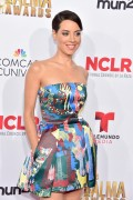 Aubrey Plaza - 2014 NCLR Alma Awards in Pasadena 10/10/14