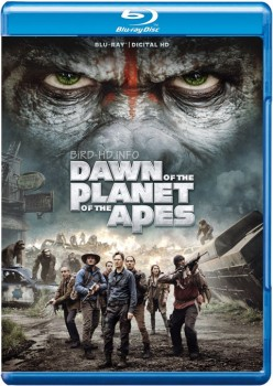 Dawn of the Planet of the Apes 2014 m720p BluRay x264-BiRD