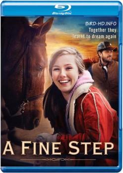 A Fine Step 2014 m720p BluRay x264-BiRD