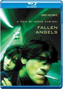 Fallen Angels 1995 m720p BluRay x264-BiRD