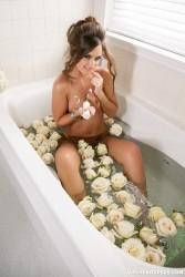 http://thumbnails110.imagebam.com/37570/876dce375695445.jpg