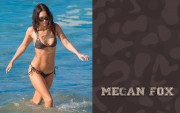 Megan Fox : Hot Bikini Wallpapers (x7)