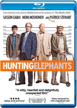 Hunting Elephants 2013 m720p BluRay x264-BiRD