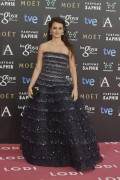 Penelope Cruz - Goya Cinema Awards 2015 in Madrid February 7-2015 x5
