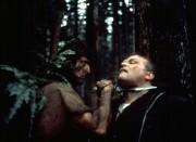Рэмбо: Первая кровь / First Blood (Сильвестр Сталлоне, 1982) 0119b4391406064