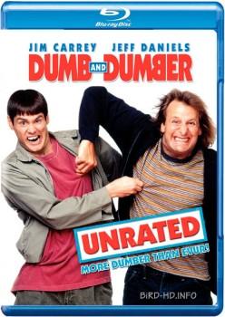 Dumb & Dumber 1994 UNRATED m720p BluRay x264-BiRD