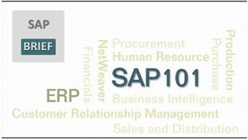 SAP - SAP 101 - Learn SAP Full Modules for Beginners
